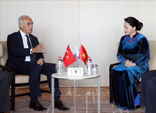 Chủ tịch Quốc hội Nguyễn Thị Kim Ngân tiếp Chủ tịch Hội đồng Kinh tế Đối ngoại Thổ Nhĩ Kỳ Ảnh 1