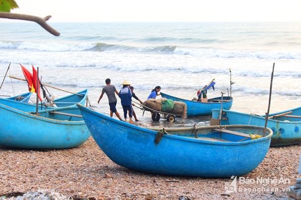 Đánh lưới ghẹ gần bờ, ngư dân Nghệ An thu tiền triệu mỗi ngày Ảnh 6