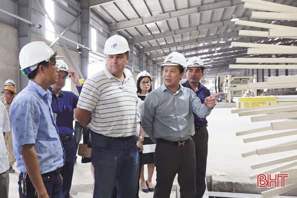 Tháng 12/2018, đưa Nhà máy sản xuất gỗ Thanh Thành Đạt vào hoạt động Ảnh 2