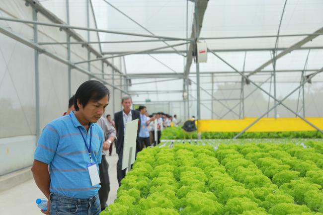 Nông dân xuất sắc hào hứng khi thăm thiên đường rau sạch VinEco Ảnh 2