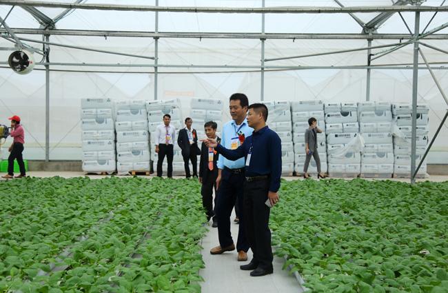 Nông dân xuất sắc hào hứng khi thăm thiên đường rau sạch VinEco Ảnh 8