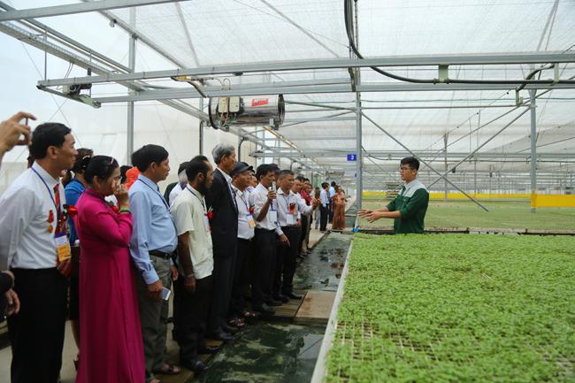 Nông dân xuất sắc hào hứng khi thăm thiên đường rau sạch VinEco Ảnh 3