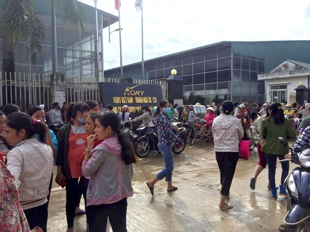 Hàng nghìn công nhân Công ty TNHH Ivory Việt Nam ngừng việc tập thể trong 4 ngày Ảnh 1