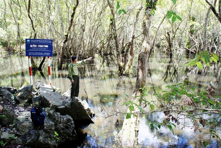 Hải Phòng: Bảo tồn đa dạng sinh học, phát triển bền vững hệ sinh thái Ảnh 1