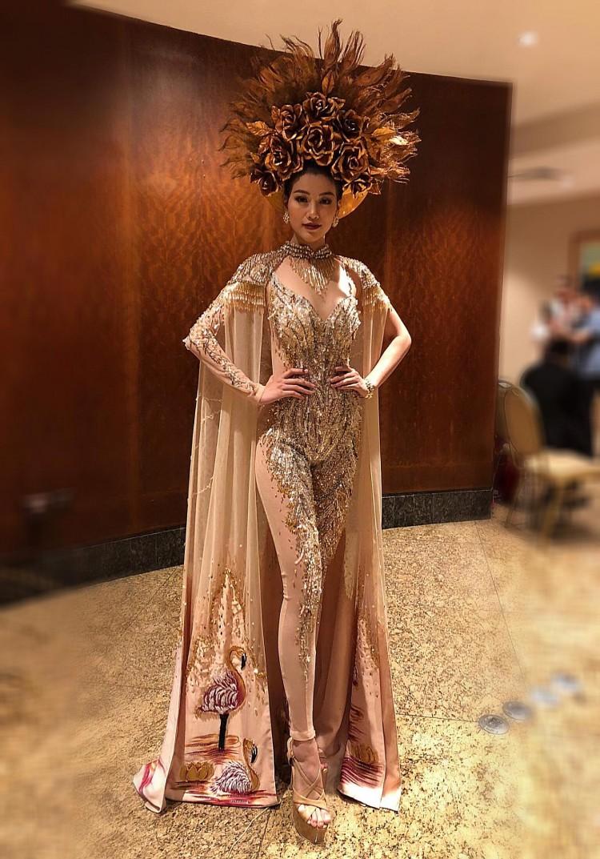 Phương Khánh đại sứ nghiện màu vàng - gam màu định mệnh cho ngôi vị Miss Earth 2018 Ảnh 6