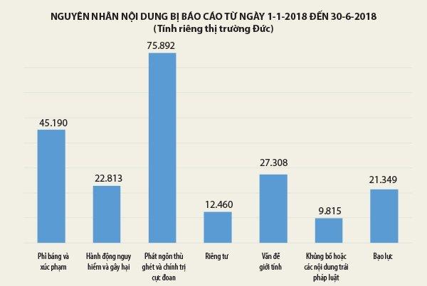 Xử lý nội dung 'xấu, độc' trên Internet: Việt Nam có thể tham khảo được gì từ Đức? Ảnh 3