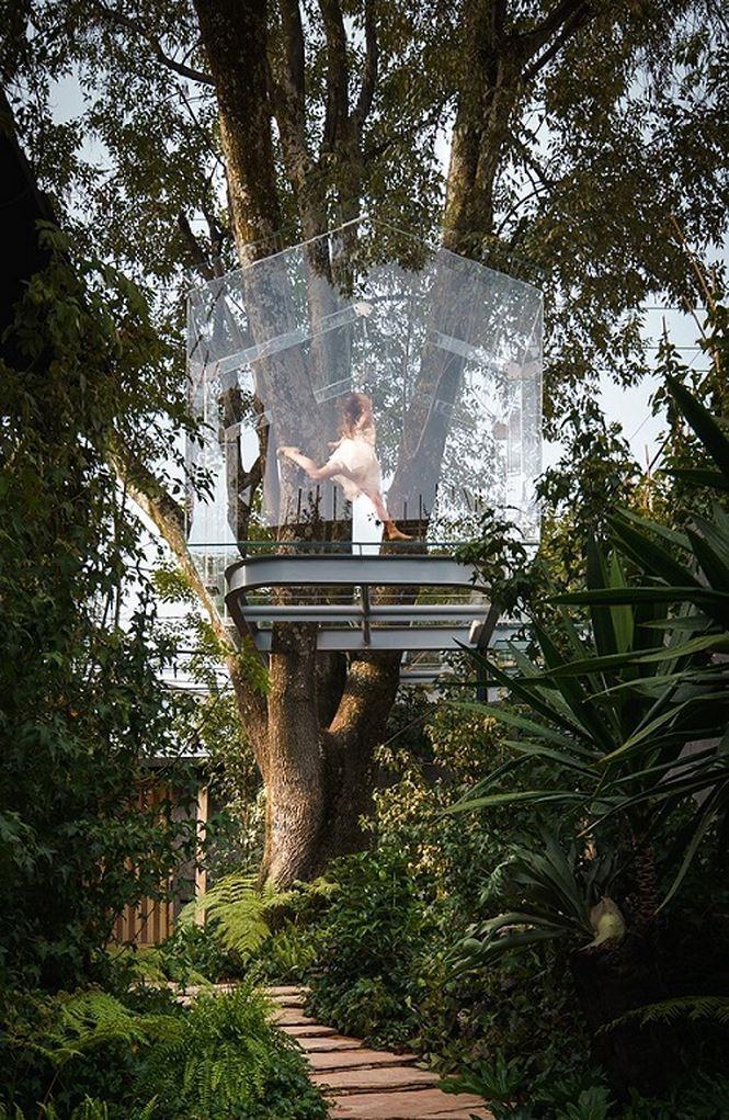 Chiêm ngưỡng nhà lơ lửng trên cây trong suốt độc nhất thế giới Ảnh 4