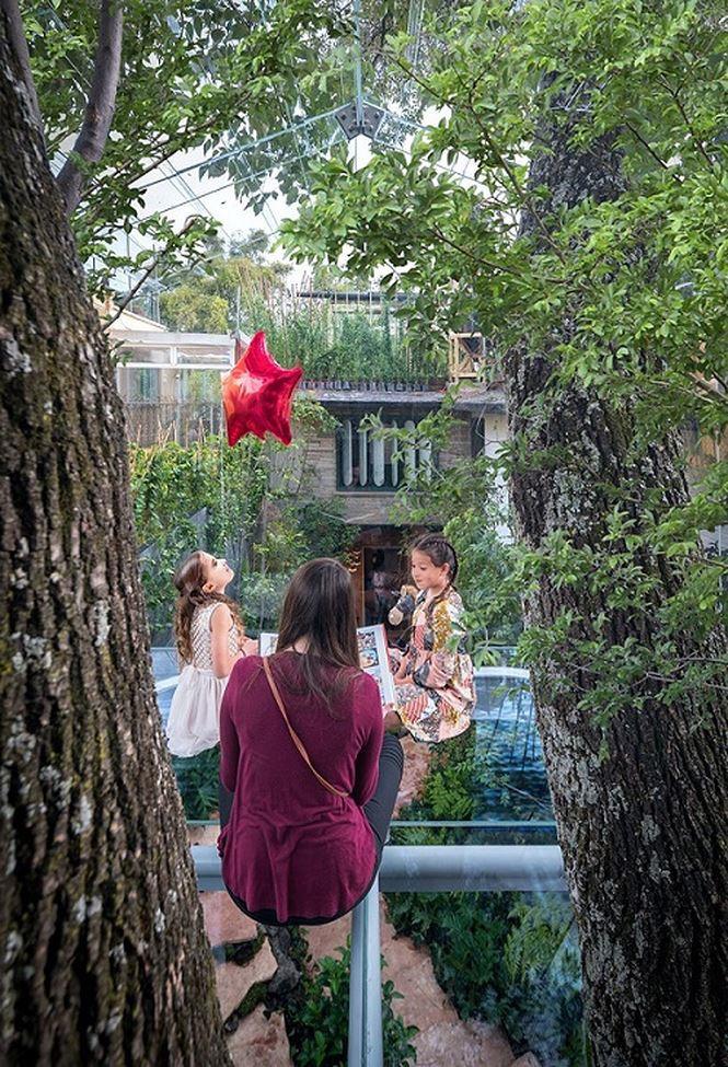 Chiêm ngưỡng nhà lơ lửng trên cây trong suốt độc nhất thế giới Ảnh 2
