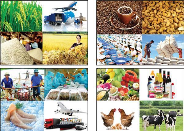 5 năm tái cơ cấu nông nghiệp, xuất khẩu đạt trên 157 tỷ USD Ảnh 1