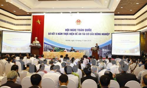 Phó Thủ tướng Trịnh Đình Dũng: Tái cơ cấu để xây dựng nông nghiệp thông minh hiện đại Ảnh 1