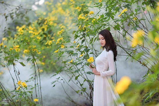 Thiếu nữ đất Cố đô khoe sắc bên hoa dã quỳ đầu mùa Ảnh 1