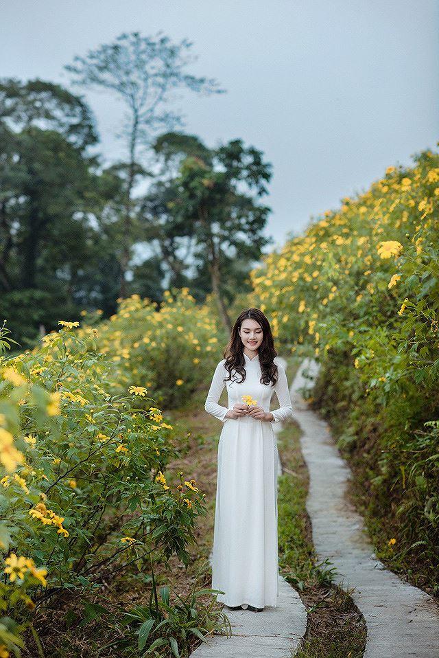 Thiếu nữ đất Cố đô khoe sắc bên hoa dã quỳ đầu mùa Ảnh 4