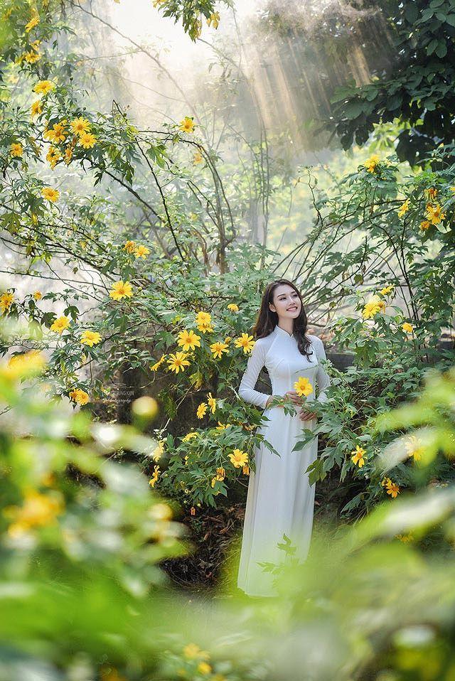 Thiếu nữ đất Cố đô khoe sắc bên hoa dã quỳ đầu mùa Ảnh 8