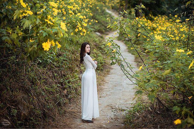 Thiếu nữ đất Cố đô khoe sắc bên hoa dã quỳ đầu mùa Ảnh 6