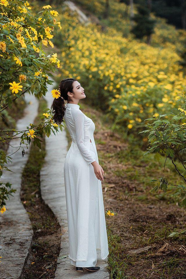 Thiếu nữ đất Cố đô khoe sắc bên hoa dã quỳ đầu mùa Ảnh 5