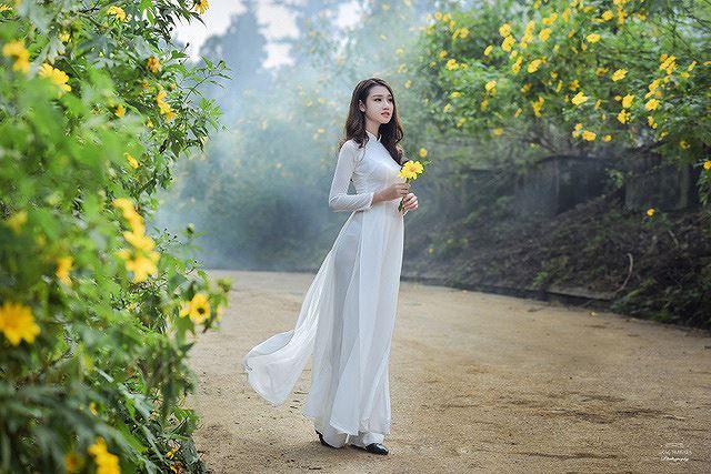Thiếu nữ đất Cố đô khoe sắc bên hoa dã quỳ đầu mùa Ảnh 11
