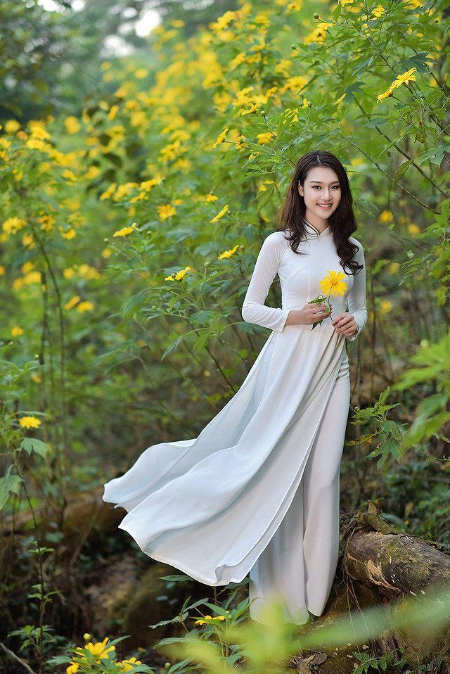 Thiếu nữ đất Cố đô khoe sắc bên hoa dã quỳ đầu mùa Ảnh 7