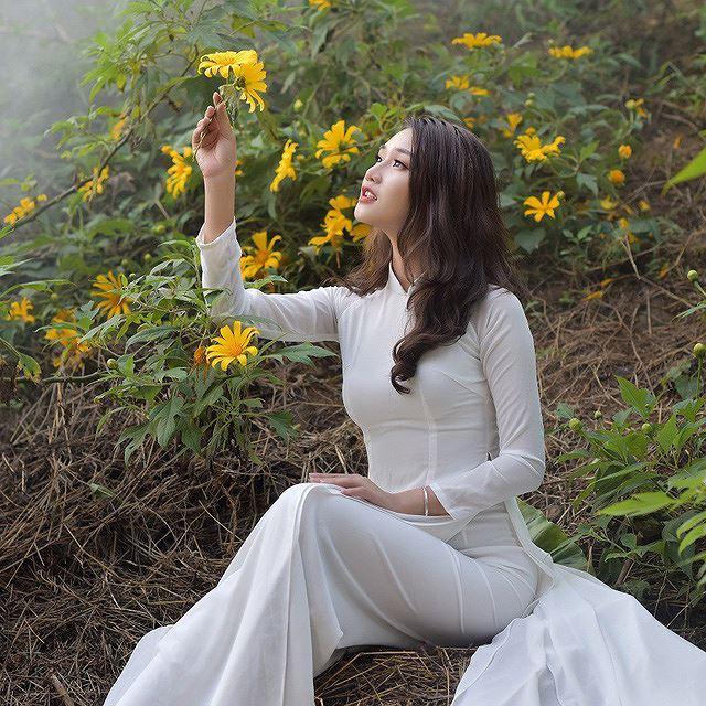 Thiếu nữ đất Cố đô khoe sắc bên hoa dã quỳ đầu mùa Ảnh 9
