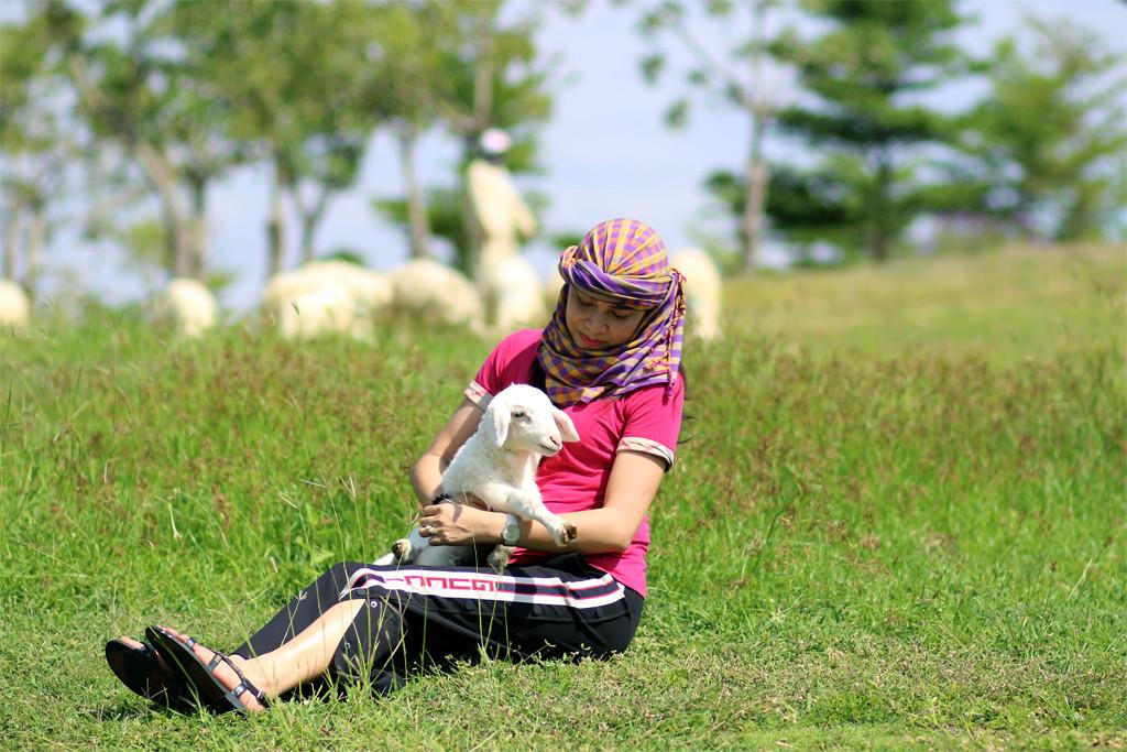 Ninh Thuận – Đi về miền thương nhớ… Ảnh 18