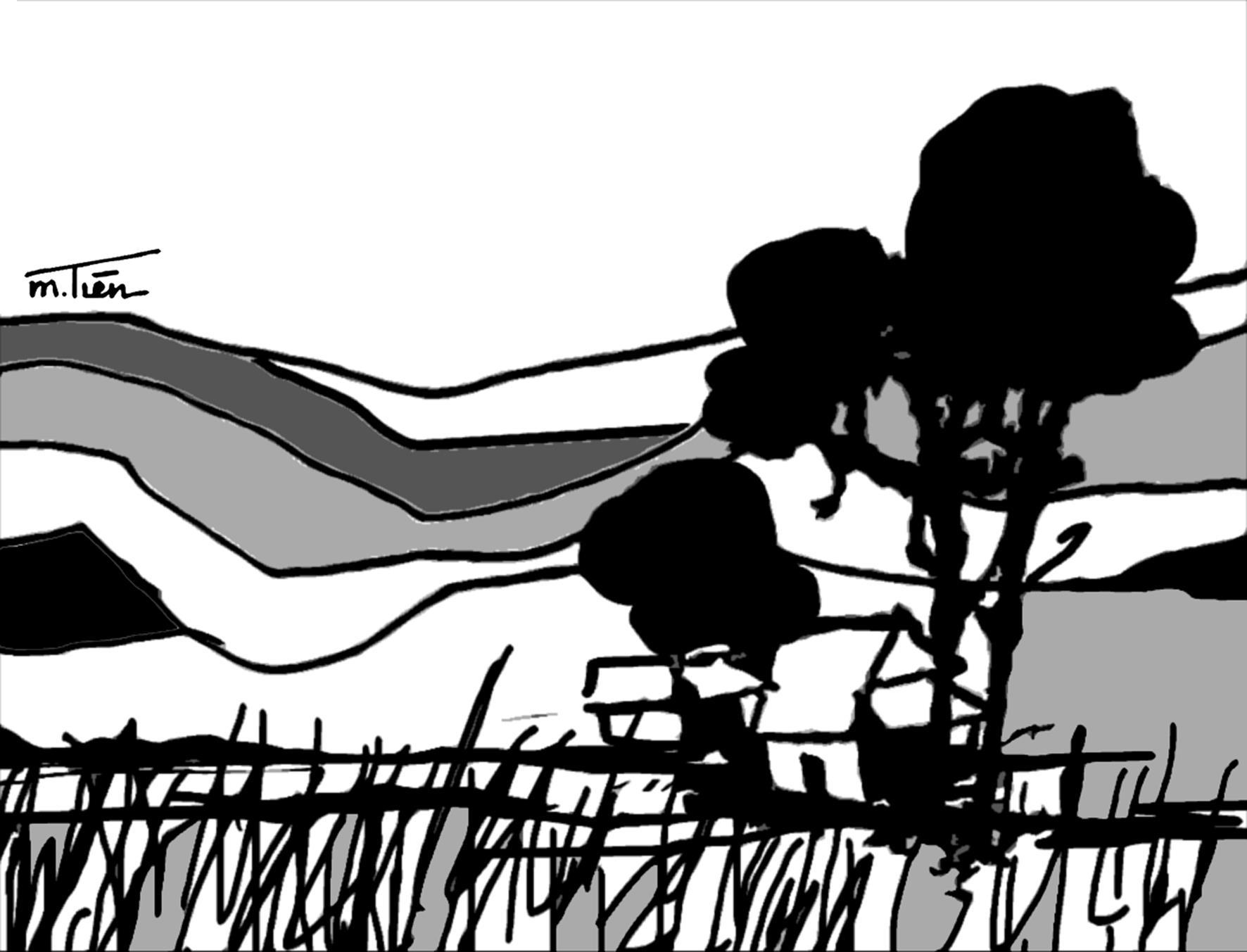 Nẻo về cỏ may Ảnh 1
