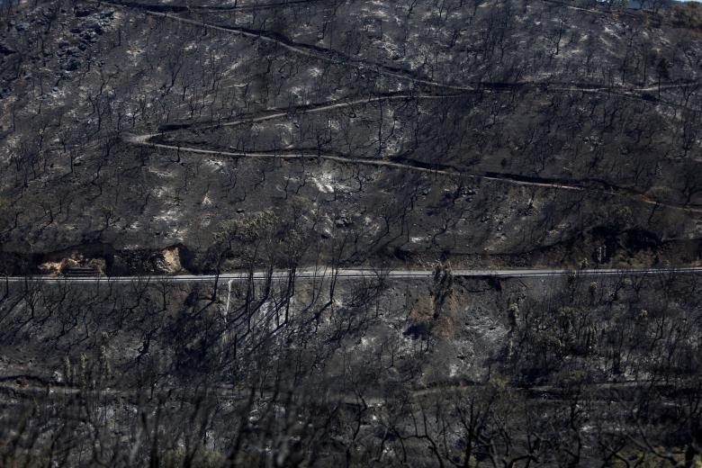 Những bức ảnh ám ảnh chụp thiên tai và hỏa hoạn từ trên không năm 2018 Ảnh 5