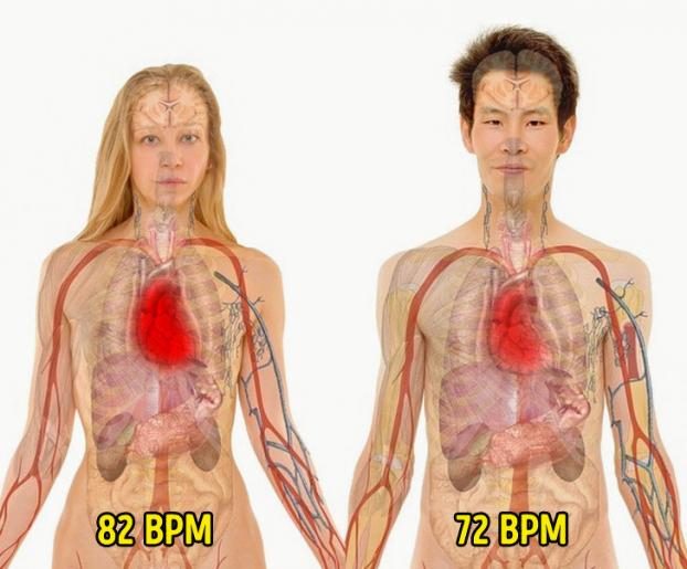 9 sự thật thú vị về cơ thể người, hóa ra chúng ta có nhiều khả năng kỳ diệu đến thế Ảnh 8