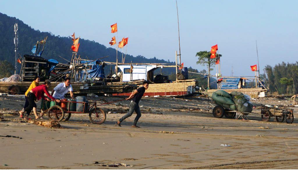 Ngư dân Thanh Hóa hồ hởi ra biển săn 'vàng trắng' Ảnh 2