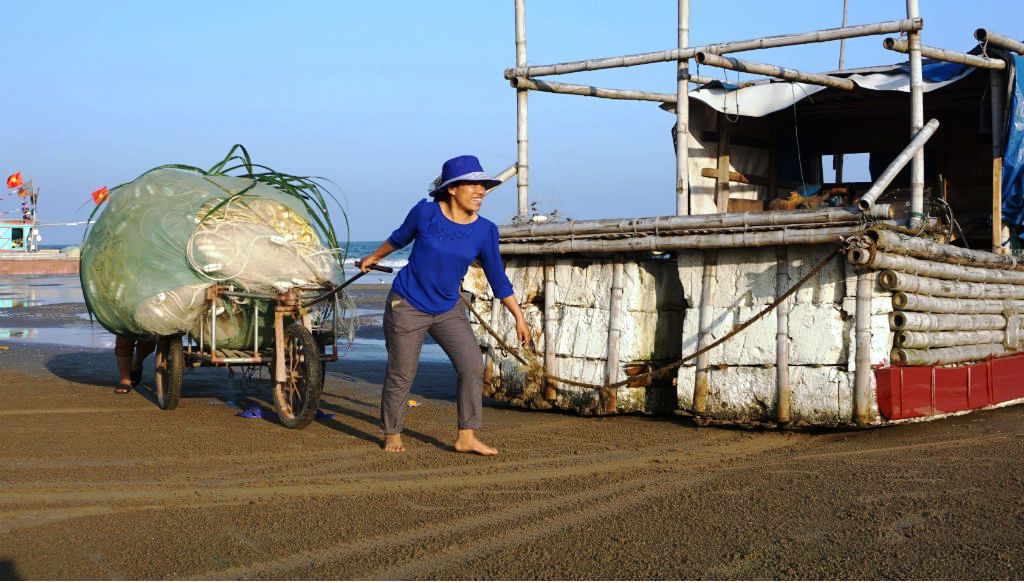 Ngư dân Thanh Hóa hồ hởi ra biển săn 'vàng trắng' Ảnh 3