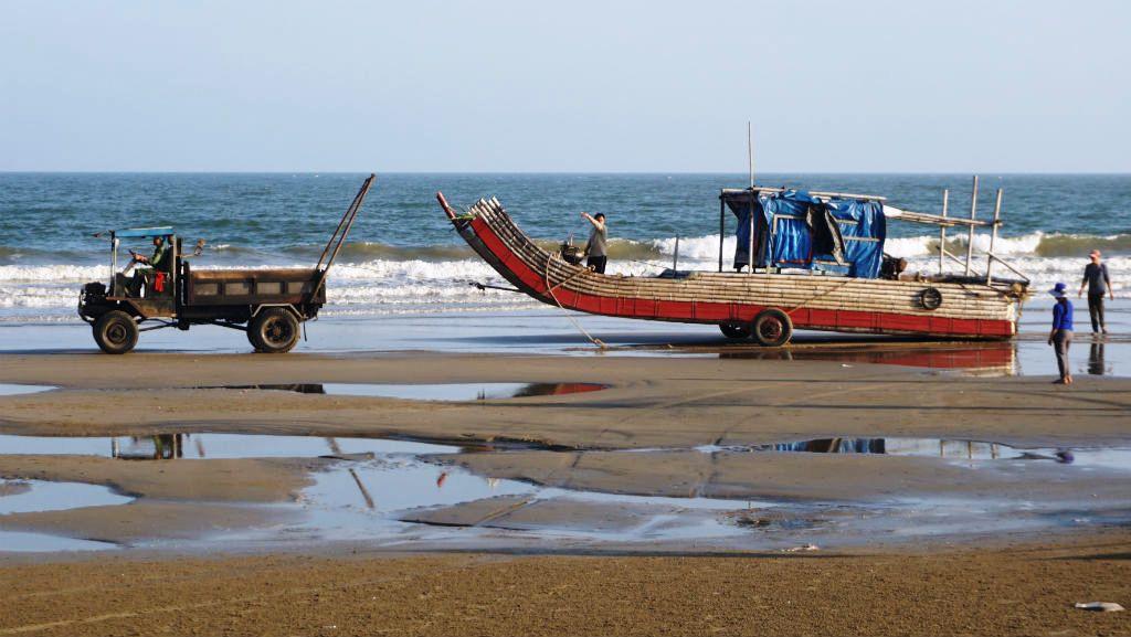 Ngư dân Thanh Hóa hồ hởi ra biển săn 'vàng trắng' Ảnh 6