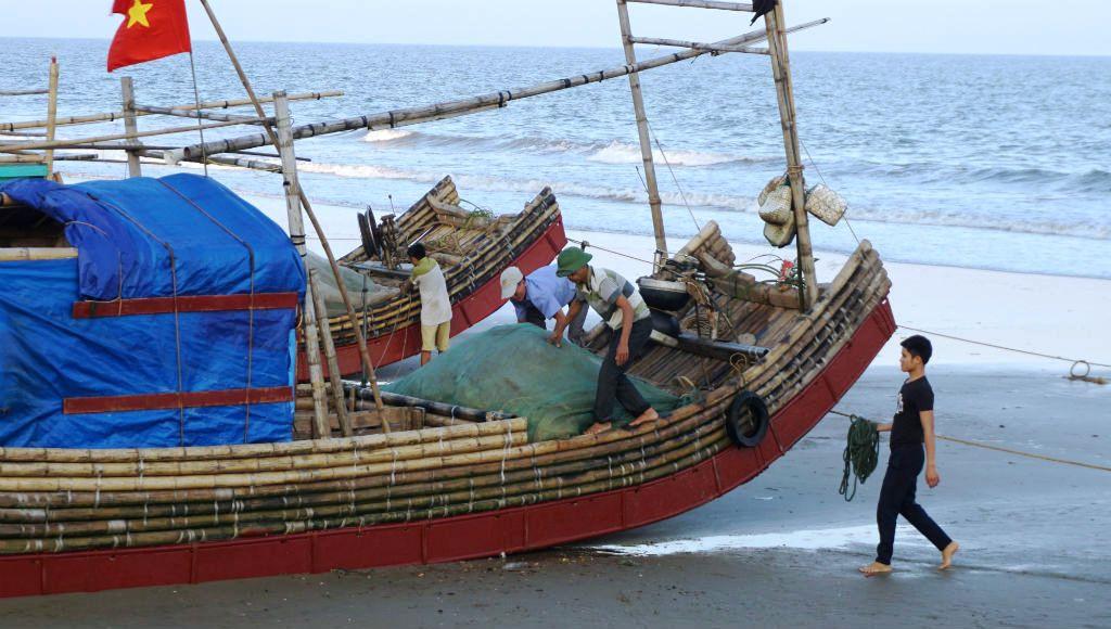 Ngư dân Thanh Hóa hồ hởi ra biển săn 'vàng trắng' Ảnh 8