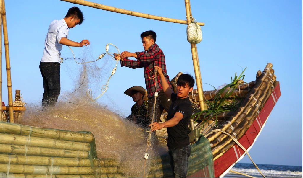 Ngư dân Thanh Hóa hồ hởi ra biển săn 'vàng trắng' Ảnh 1