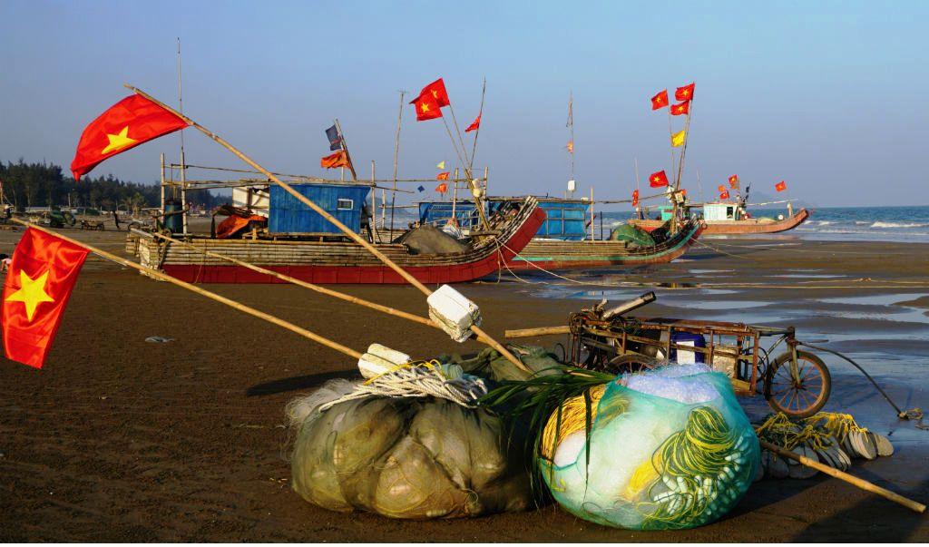 Ngư dân Thanh Hóa hồ hởi ra biển săn 'vàng trắng' Ảnh 7
