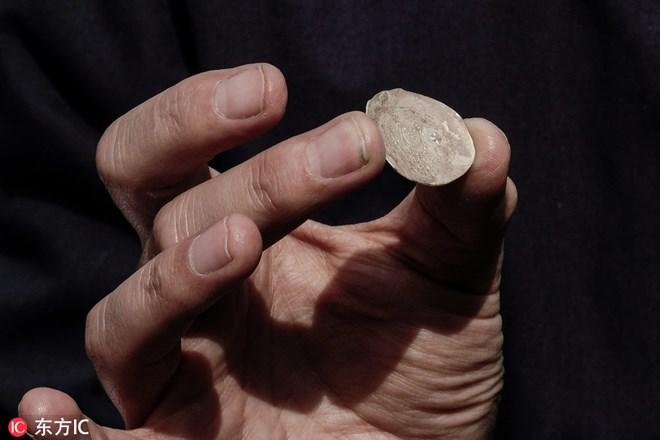 Israel phát hiện đồng tiền xu quý hiếm gần 2.000 năm tuổi Ảnh 1