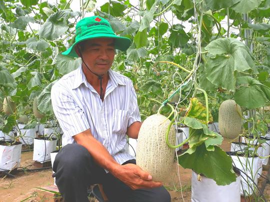 Đầu năm, lãnh đạo tỉnh An Giang lội ruộng thăm đồng cùng nông dân Ảnh 2