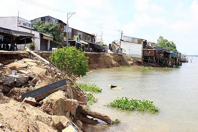 Xuất hiện vết nứt dài 70m ở bờ sông Hậu thuộc An Giang ảnh 1