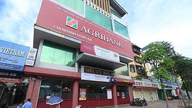 Muốn tham gia 'hồi sinh' ALC I của Agribank, nhóm nhà đầu tư Việt kiều vẫn phải chờ đợi thêm Ảnh 1