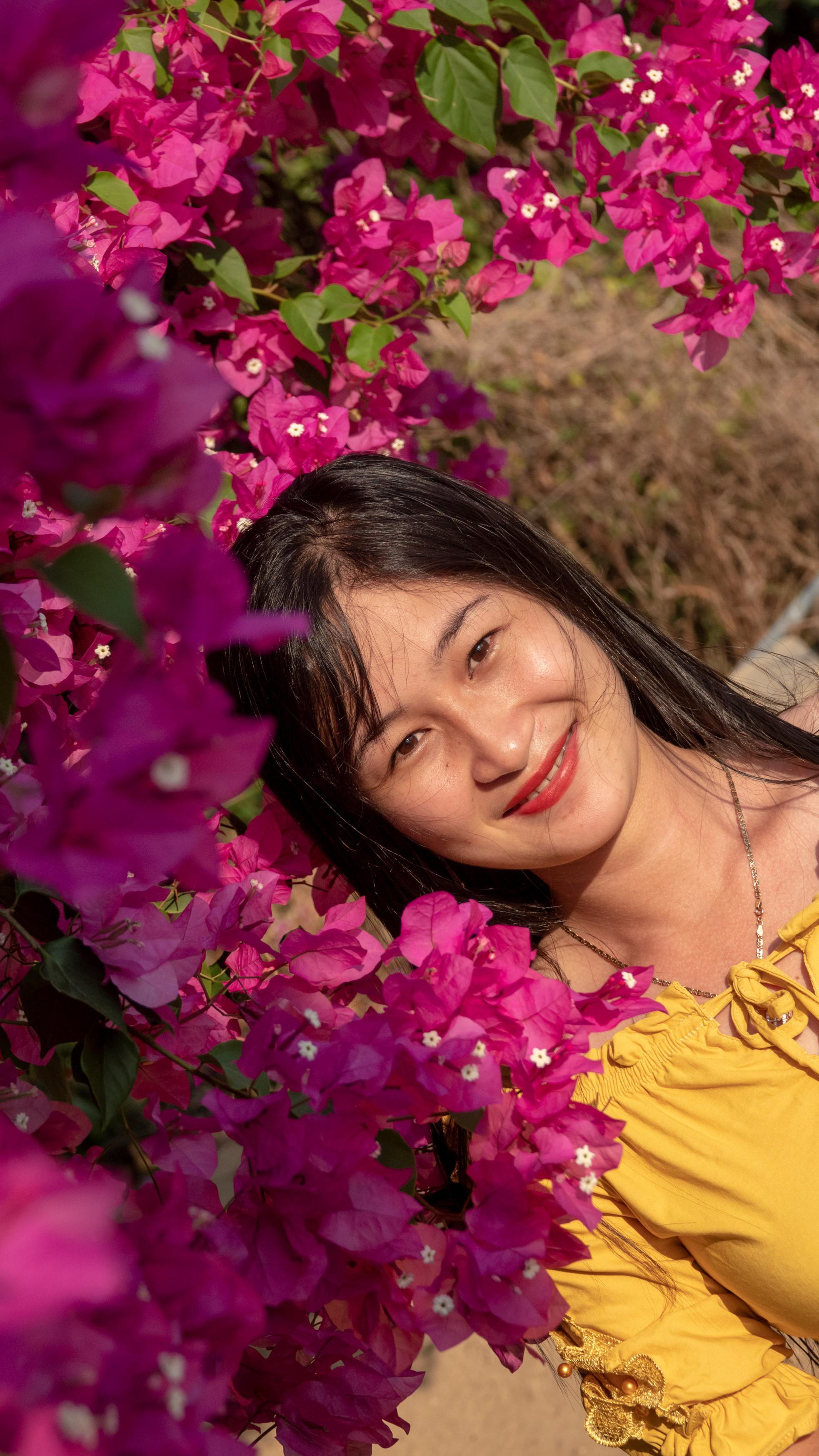 Chiêm ngưỡng 'cụ' hoa giấy trăm triệu ở đảo Lý Sơn Ảnh 7