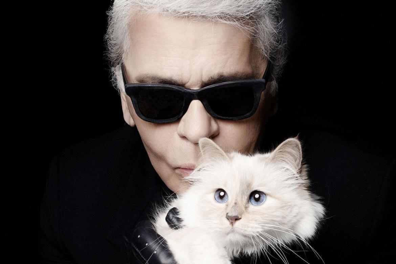 Mèo cưng thừa hưởng tài sản 200 triệu USD sau khi Karl Lagerfeld mất? Ảnh 1
