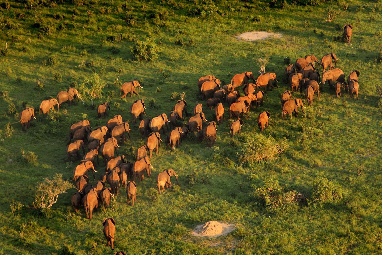 Ethiopia, nơi sở hữu vùng trũng thế giới với nền nhiệt 50 độ C Ảnh 5
