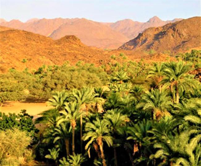 Không ngờ những ốc đảo thiên đường này lại mọc ngay giữa sa mạc Ảnh 7