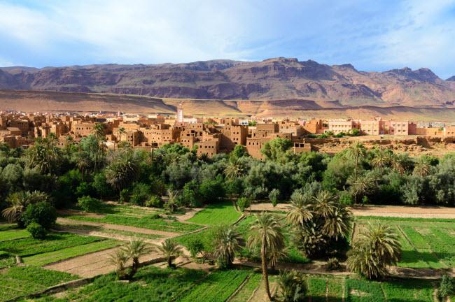 Không ngờ những ốc đảo thiên đường này lại mọc ngay giữa sa mạc Ảnh 4