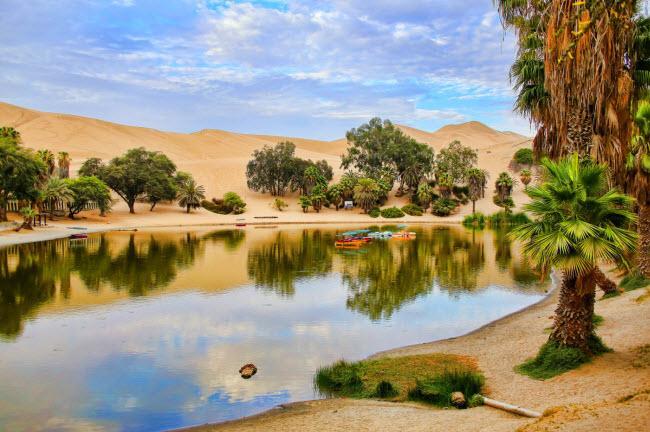Không ngờ những ốc đảo thiên đường này lại mọc ngay giữa sa mạc Ảnh 6