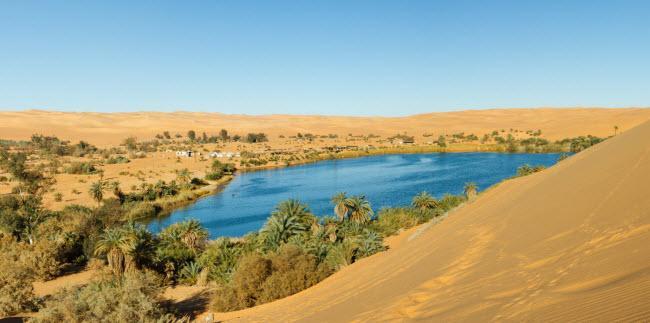 Không ngờ những ốc đảo thiên đường này lại mọc ngay giữa sa mạc Ảnh 20