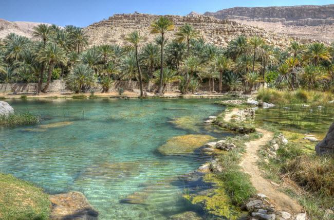 Không ngờ những ốc đảo thiên đường này lại mọc ngay giữa sa mạc Ảnh 2