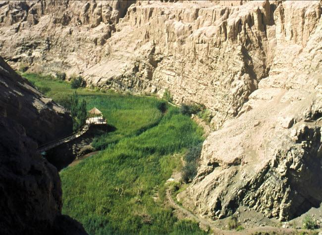 Không ngờ những ốc đảo thiên đường này lại mọc ngay giữa sa mạc Ảnh 28