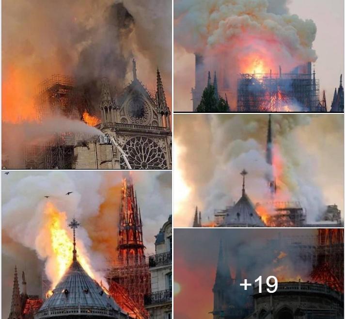 Ký ức xúc động về Nhà thờ Đức Bà Paris của Hoa hậu Ngọc Hân Ảnh 3