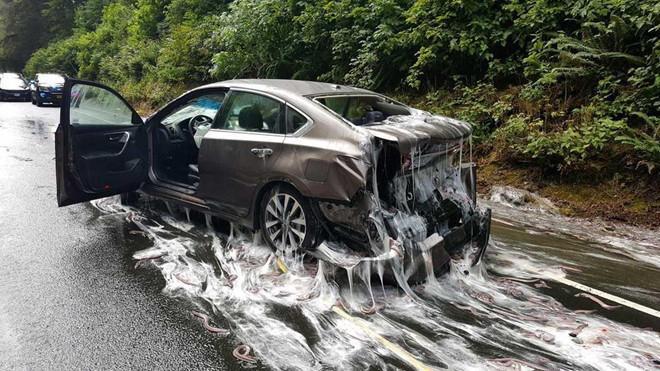 Tài xế khốn khổ với những sự cố hy hữu trên đường cao tốc Ảnh 1