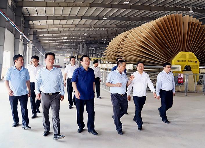 Khánh thành nhà máy gỗ MDF lớn nhất tỉnh Hà Tĩnh Ảnh 1