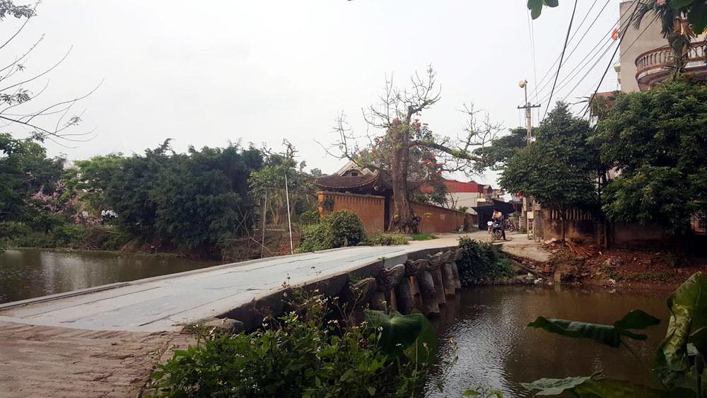 Điều đặc biệt ở ngôi làng có những nhà cổ 'bằng 3 nhà mặt phố' Ảnh 12