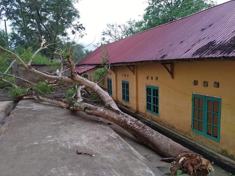 Mưa đá ở Yên Bái làm 200 nhà hư hỏng, thiệt hại trên 5,2 tỷ đồng Ảnh 4